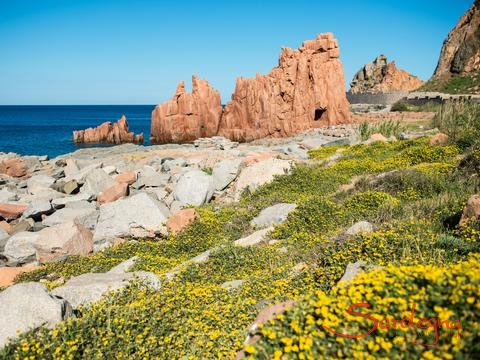 Sight; Rocce Rosse in Arbartax