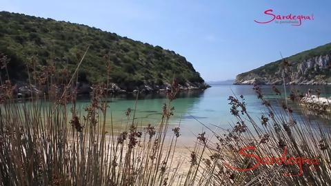 Video Spiaggia Cala Moresca