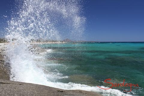 DE: S.Elmo