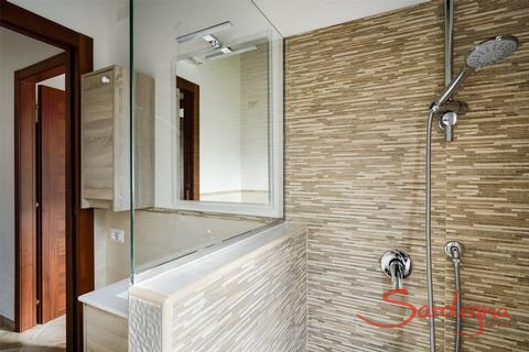 Modern bath with shower